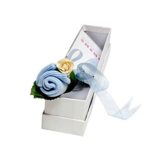 Vrtnica modra