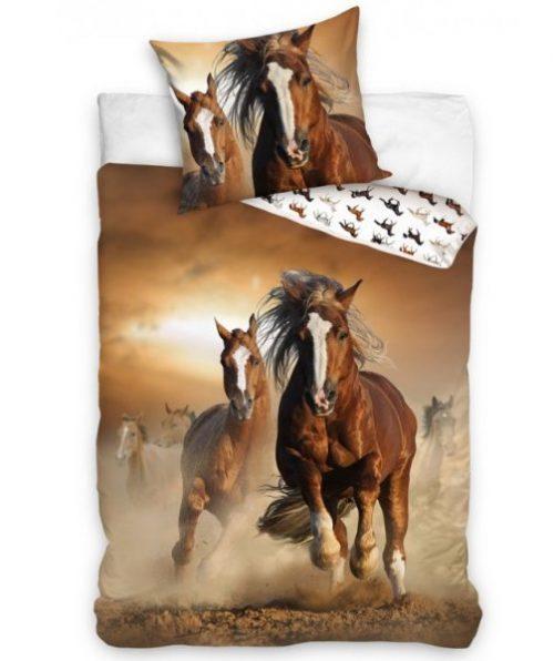 Divji konji