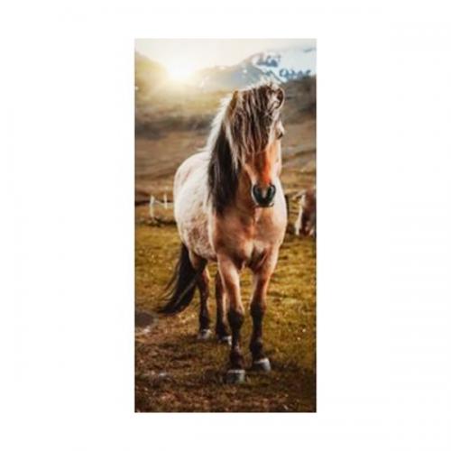 Brisača Konj