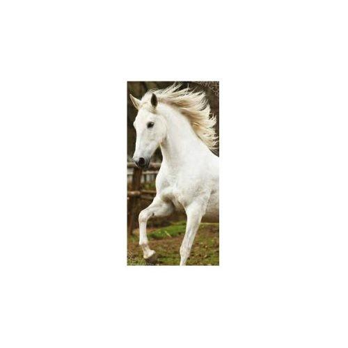 Brisača konj 70x140