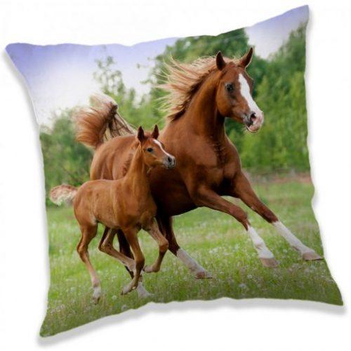 Blazina konj rjavi