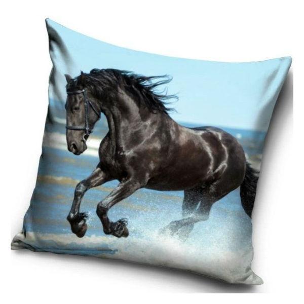 Konj črni